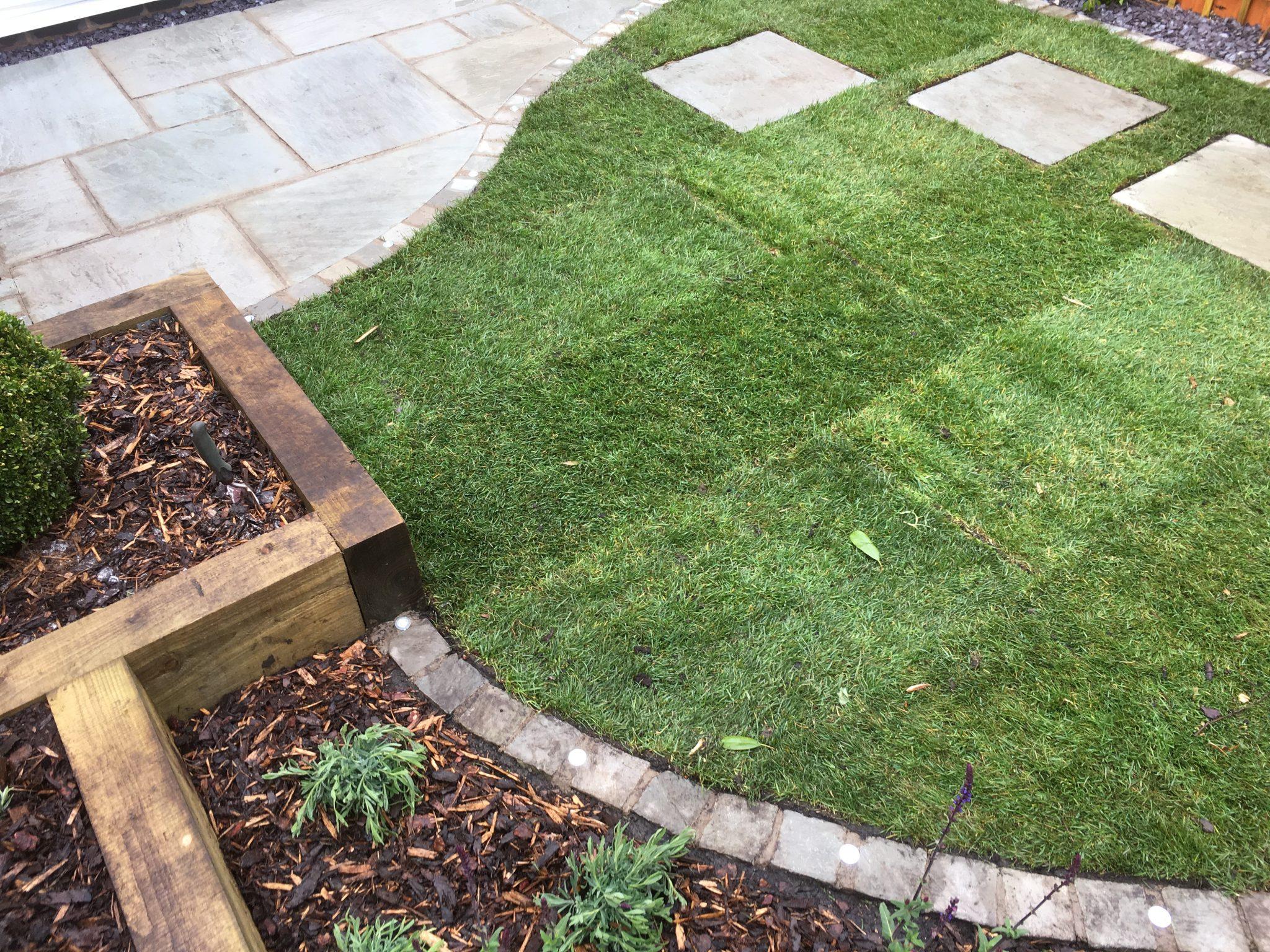 fresh turf lawn